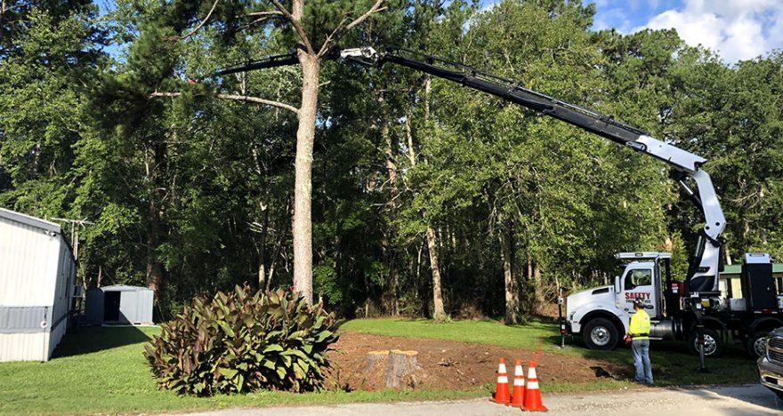 Kansas City Missouri Tree Removal Company
